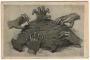 A rablók kezei - The hands of robbers - Les mains violatrices - Mani violatrici - Räuberhände. Irredenta képeslap (1919)